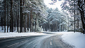 Snow-covered asphalt road through the pine forest on a sunny winter day, Estonia