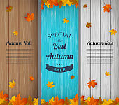 Autumn banners set. Autumn Sale. Background with falling leaves. Vector