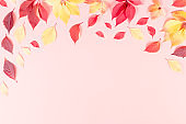 Autumn composition. Frame made of red and yellow autumn leaves on pink background. Flat lay, top view