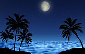 Silhouettes of palm trees at night by the sea with a starry sky and a shining moon. Romantic landscape.