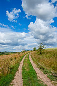 Sunny summer landscape with ground country road passing through the fields and green meadows.