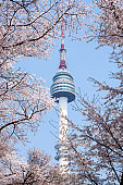 N Seoul tower in Spring with cherry blossom.
