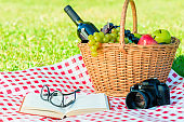 a picnic basket with food and alcohol, a book and a camera on a checkered tablecloth in the park