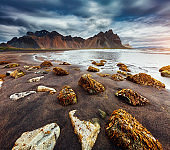 Beach with wet black sand. Location place Stokksnes cape, Vestrahorn (Batman Mountain), Iceland, Europe.