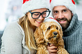 Portrait of a christmas couple with their dog