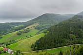 Germany, Tree covered mountains of black forest nature landscape in foggy atmosphere
