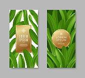 Tropical leaves banners with golden frame for text or message.