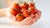 close up of female hands holding cherry tomatoes