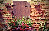 rural scene with pot of geraniums flowers and wall with red bric