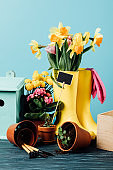 close up view of arranged rubber boots with flowers, flowerpots, gardening tools and birdhouse on wooden tabletop on blue