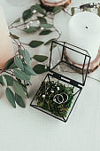 close up view of arranged candles, wedding rings in rustic box with plants inside