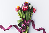 beautiful colorful tulips with purple ribbon isolated on grey