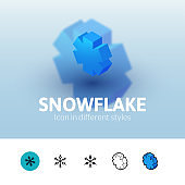 Snowflake icon in different style