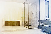 Modern bathroom corner with a gray tub toned