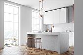 White and bronze loft kitchen interior