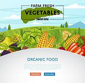 Farm fresh vegetable banner with rural landscape