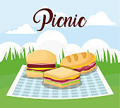picnic and food design