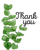 Thank you tag in green watercolor eucalyptus leaves