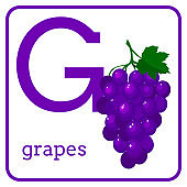 An alphabet with cute fruits, Letter G grapes