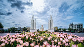 The Democracy monument with foreground of Siam tulips flowers and background of sunrising sky in Bangkok Thailand