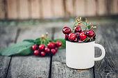 Ripe Organic Freshly Picked Sweet Cherries in Vintage Enamel Mug on Green Foliage Garden Nature Background. Summer Harvest Vitamins Clean Eating Freshness Vegan. Poster Banner Template
