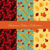 Hand draw autumn patterns
