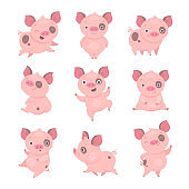 Cute piggy collection.