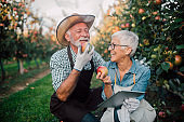 Happy old couple using digital tablet at apple orchard