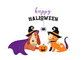 Happy Halloween - cats and dogs in monsters costumes, Halloween party. Vector illustration, banner, elements set