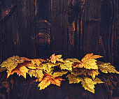 Fall background with maple leaves and wood