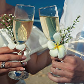 wedding couple just married. Couple holds glasses of champagne