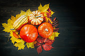 Autumn backdrop decoration with pumpkins, marrow and colorful leaves on dark wooden background. Top view