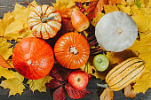 Pumpkins with ripe apples and pear on colorful maple leaves. Autumn seasonal image. Top view