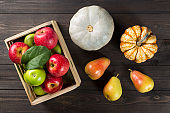 Pumpkins with ripe apples in a box and pears on dark wooden background. Autumn seasonal image.