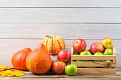 Various pumpkins with colorful maple leaves and ripe apples in a box against light wooden wall background. Autumn and halloween concept. Free space.