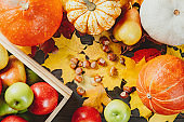 Ripe apples in a box with pumpkins, pears, hazelnuts and colorful maple leaves on dark wooden background. Autumn seasonal image. Top view