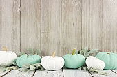 Autumn border of white and turquoise pumpkins against gray wood