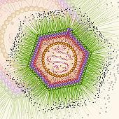 Mimi virus. Background. Eps 10.