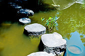 Stepping stones on public park pond