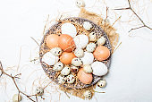 Multicolored chicken and quail eggs with straw and branches