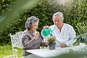 Asian Senior Couple enjoying with planting flower.