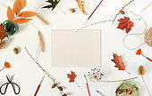 Autumn composition background. Flat lay, top view creative minimal mock up template.  Top view. Copy space