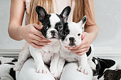 French bulldog and a woman
