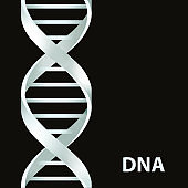 Silver Dna Dna. 3d stile, vector illustration, isolated on black background