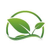 Green leaf logo,ecology nature.Vector illustration.