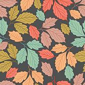 가을, 낙엽패턴