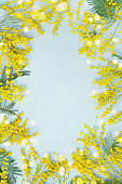 Yellow mimosa flower frame. Spring card for Mothers day or Easter.