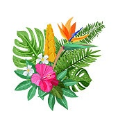 Tropical bouquet with flowers hibiscus, plumeria, strelitzia and palm, monstera leaves. Vector isolated illustration.