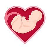 Embryo in heart shape inside human vector illustration unborn person