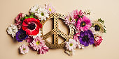 Flower peace background arrangement in pastel color